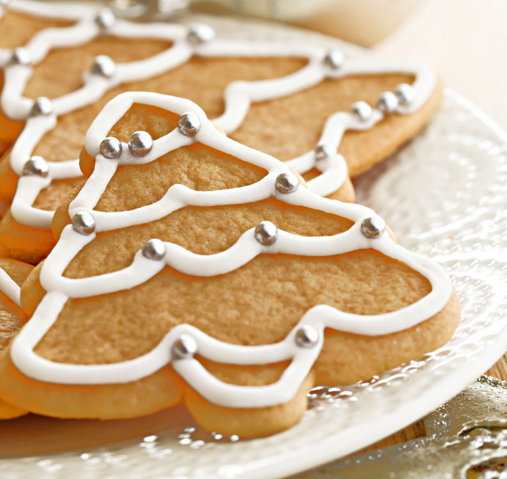 "Easy Vegan Royal Icing - Hardens as it dries; great for gingerbread house construction & perfectly formed ""icicles"" to piping borders & details on cookies."