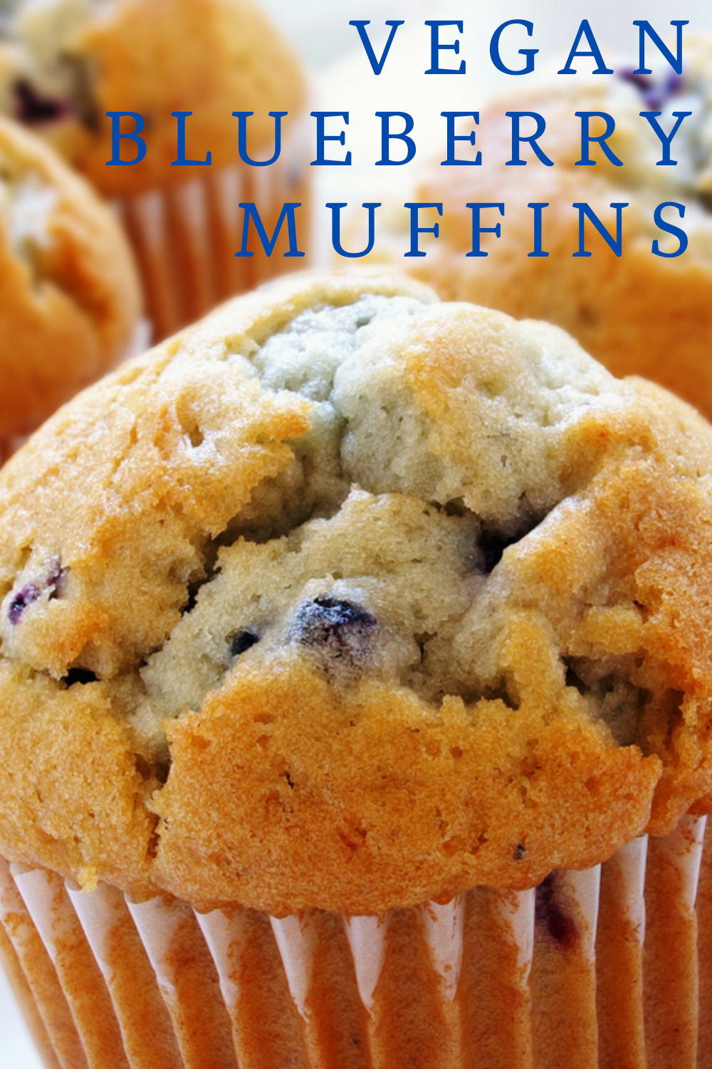 Vegan Blueberry Muffins! Dairy-free, vegan, and ready in 30 minutes! Perfect for packing in lunches or a quick breakfast on the go!
