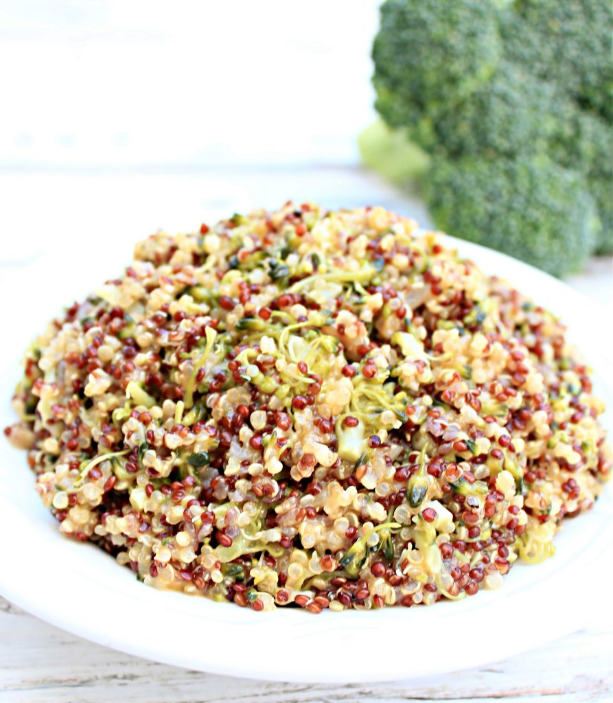 Cheesy Broccoli Quinoa ~ An easy, one-pot, stovetop dish that packs a nutritional punch with fresh broccoli and protein-rich quinoa. Dairy-free cheddar cheese adds a subtle creaminess to this healthy alternative to traditional broccoli rice casserole.