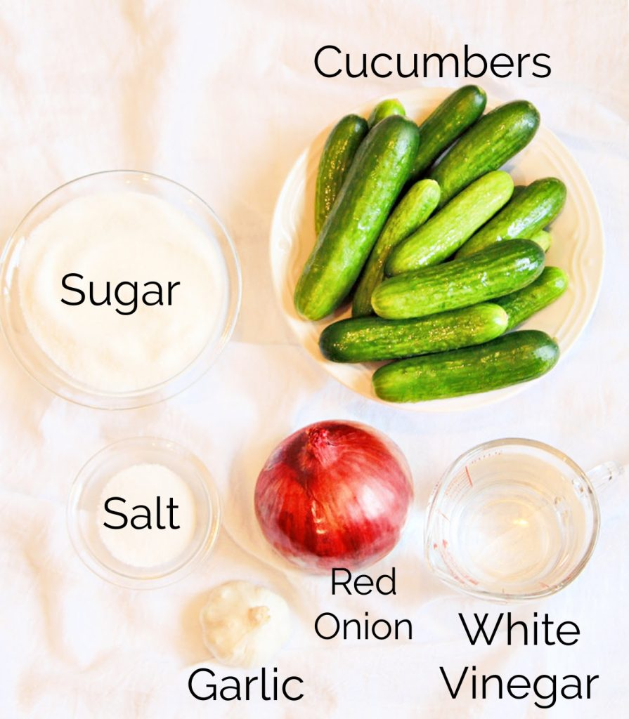 Ingredients needed to make homemade pickles.