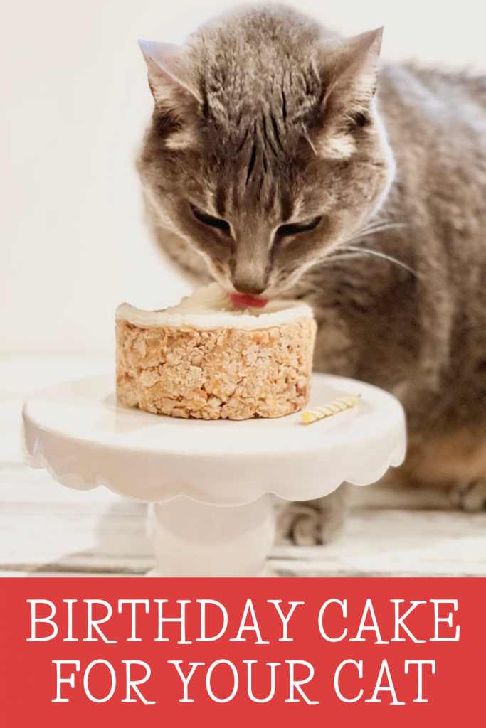 Birthday Cake For Your Cat ~ 4 simple ingredients are all you needed for a plant-based treat filled with your cat's favorite meaty flavors!