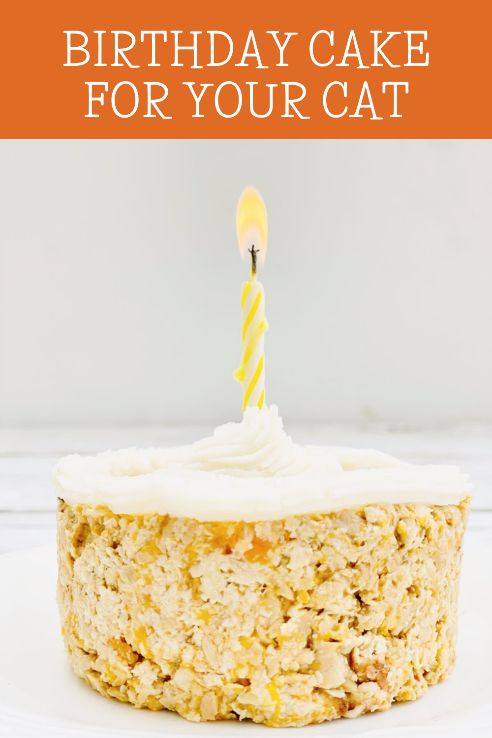 Birthday Cake For Your Cat ~ 4 simple ingredients are all you needed for a plant-based treat filled with your cat's favorite meaty flavors!  via @thiswifecooks